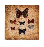 SchmetterlingeII Poster von Claudette Beauvais