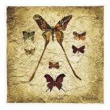 SchmetterlingeIV Poster von Claudette Beauvais