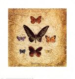 Papillons III Kunstdrucke von Claudette Beauvais