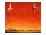 Os elefantes, cerca de 1948 Arte por Salvador Dalí