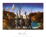 水面に象を映す白鳥, 1937 ポスター : サルバドール・ダリ