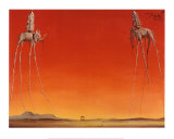 Los elefantes, c.1948 Póster por Salvador Dalí