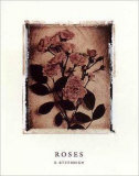 Rose Study I Prints by Dick &amp; Diane Stefanich