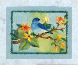 Oiseau bleu Posters par Linn Done