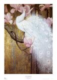 Pfau mit Magnolien Poster von Jessie Arms Botke