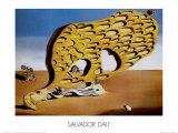 L'Enigma del Desiderio Juliste tekijänä Salvador Dalí