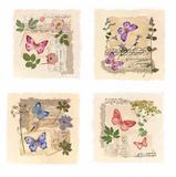 Butterfly Gardens Poster von Gillian Fullard