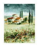 Toscane IV Affiche par Franz Heigl