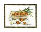 Onions Posters by Alie Kruse-Kolk