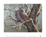 Lautloser Wald (Virginia-Uhus) Poster von Pierre Leduc