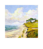 Coastal Lanscape Prints by W. Neck