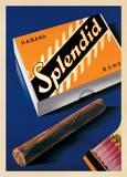 Splendid Habana Poster von Fred Neukomm