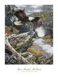 In den Höhen der Rocky Mountains (Ausschnitt) Poster von Jan Martin McGuire