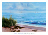 Sandpiper Beach Prints by Diane Romanello