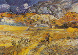Landscape in St. Remy, c.1898 Print by Vincent van Gogh