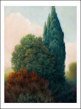 Tuscan Trees II Posters by Alan Stephenson