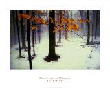 David Winston - Quiet Woods Umělecké plakáty