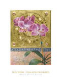 Phalaenopsis Orchid Posters by Fred Wessel