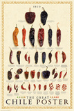The Great Chile Poster (dried) Prints by Elliot Miller