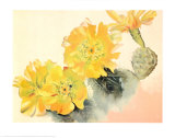 Yellow Cactus Prints by Georgia O'Keeffe