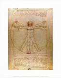 O Homem Vitruviano, c.1492 Arte por  Leonardo da Vinci