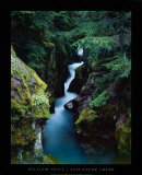 Avalanche Creek Prints by William Neill