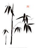 Bamboo I Plakater af Jenny Tsang
