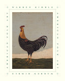 Rooster Facing West Posters par Warren Kimble