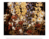 Wildflowers Posters by Tom Thomson