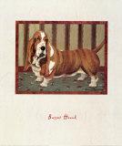 Basset Hound Prints by Lanny Barnard