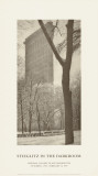 Flatiron Building Prints by Alfred Stieglitz