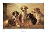 Jagdhunde Kunstdrucke von Edward Robert Smythe