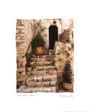 Escalinata de piedra (tamaño reducido; 8x10) Arte por Maureen Love