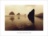 The Reflecting Tide Posters by Chris Simpson
