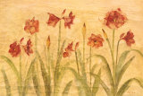 Row of Red Amaryllis Print van Cheri Blum