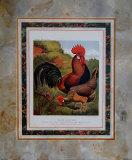 Brauner Hahn Poster von  Cassell's Poultry Book