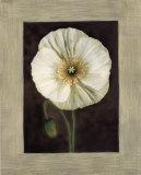 Flora I Print by Andrea Trivelli