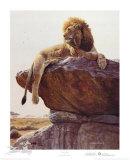 Kopje-König (Limitierte Auflage) Limitierte Auflage von Jan Martin McGuire