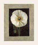 Flora I Prints by Andrea Trivelli