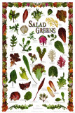 Salades de Californie Art par Larry Kunkel