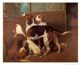 Hounds by a Stable Door Poster von John Emms