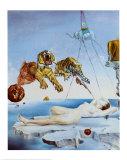 Sogno causato dal volo di un'ape attorno a una melagrana, un attimo prima del risveglio Stampe di Salvador Dalí