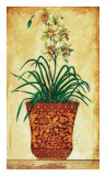 Single Stem Orchid Print by Merri Pattinian