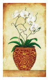 Multi Stem Orchid Print by Merri Pattinian