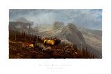 In den Beartooths Kunstdrucke von Michael Coleman