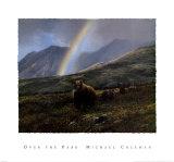 Über den Pass Kunstdrucke von Michael Coleman