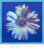 Andy Warhol - Daisy, c.1982 (Blue on Blue) Reprodukce