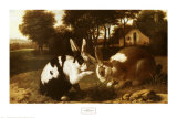 Zwei Kaninchen in der Landschaft Kunstdruck