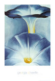 Blue Morning Glories Prints by Georgia O'Keeffe