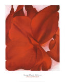 Red Cannas Prints by Georgia O&#39;Keeffe
